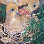 Stage Five of a Painting of Mourning Doves by Stephanie Thomas Berry
