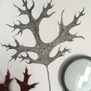 Scarlet Oak Leaf by Stephanie Thomas Berry