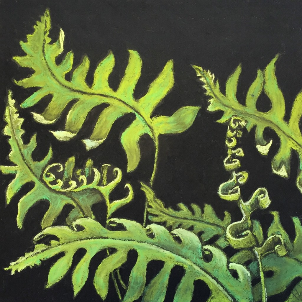 Fernalicious! pastel on board